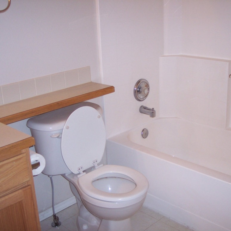 Cinnamon hall bath